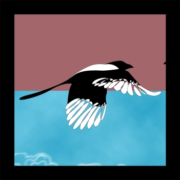 Magpie Illustration Detail